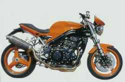 Triumph Speed Triple S Pettinari